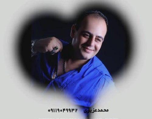دانلود آهنگ عشق من نیلوفر من از محمد عزیزی