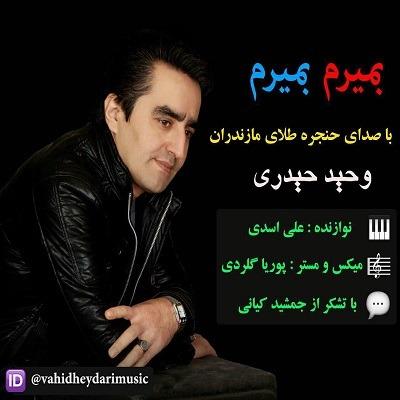 دانلود آهنگ بمیرم بمیرم از وحید حیدری